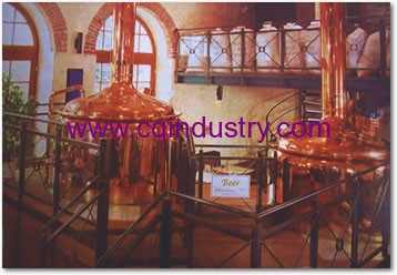 red copper system brew house