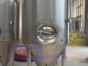 25BBL fermentor sidemanhole