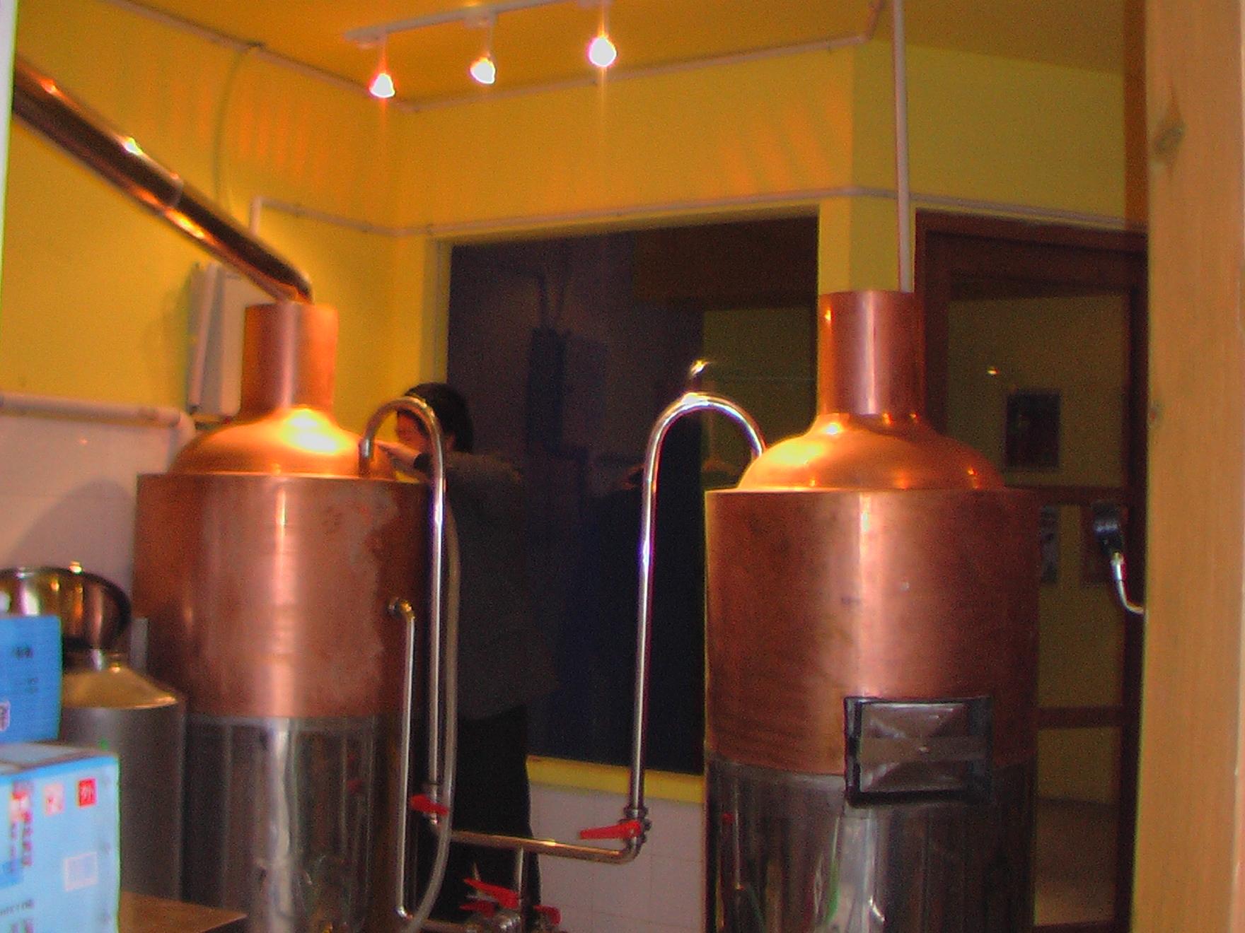100L microbrewery pub equipment