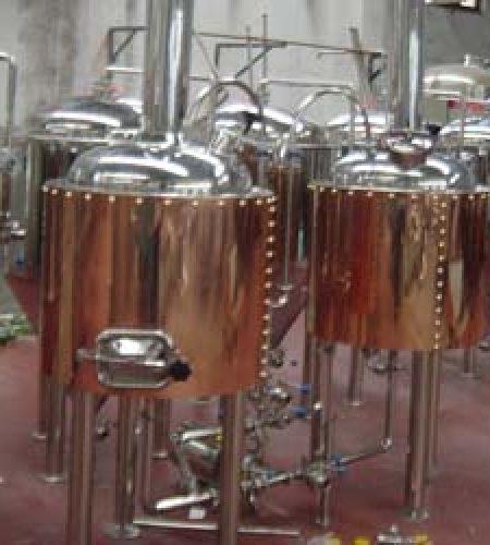 100L microbrew equipment pub